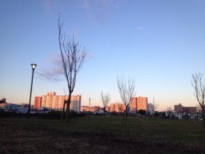 朝焼けの公園