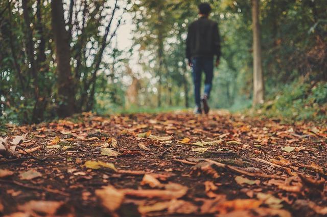 地面と歩き行く人