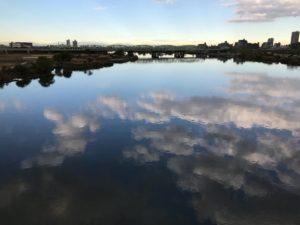 新荒川大橋と水面と鳥