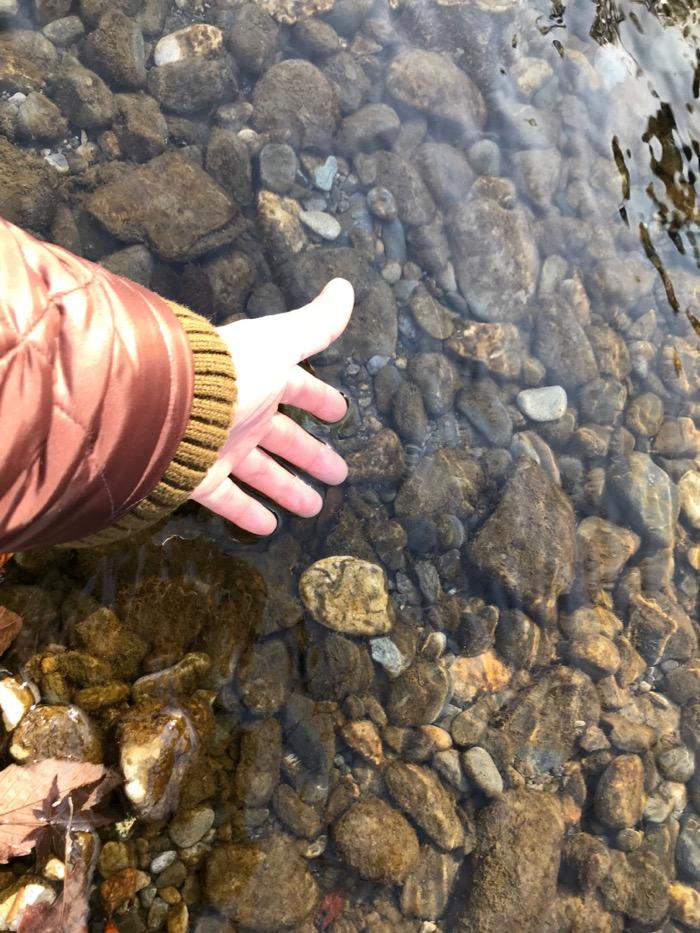 透明度が高い奥多摩の川2