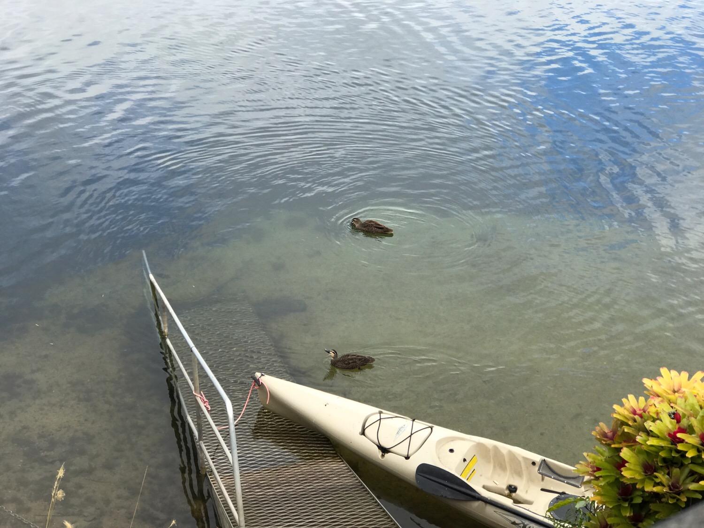 バリンレイクの湖面にて